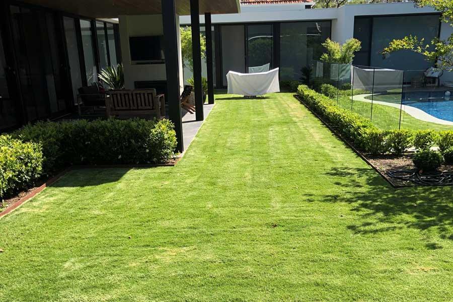 Lawn Installer Woodville - Subject