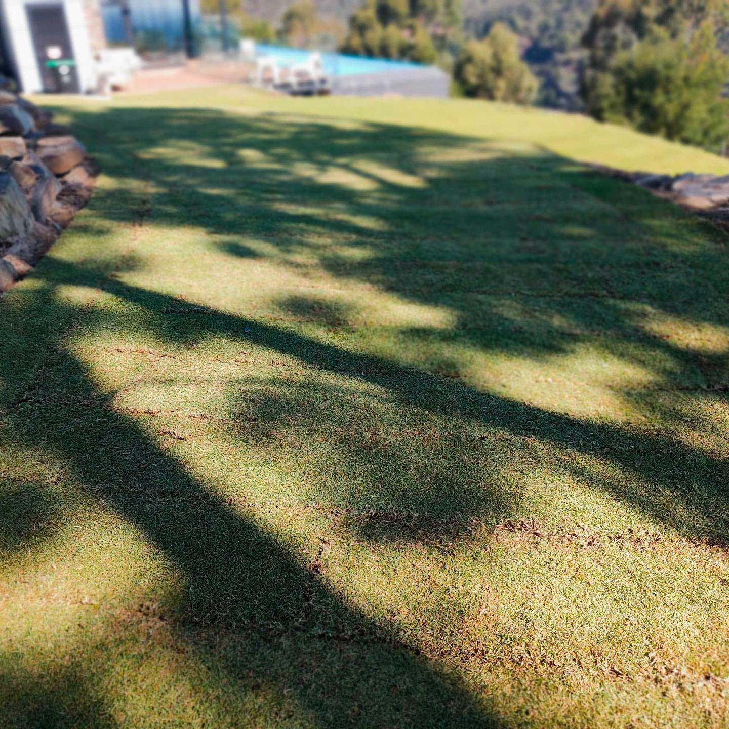 Mount Osmond – installation with a view! - Completed