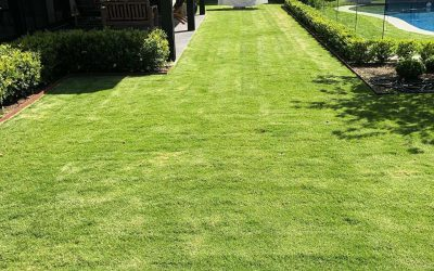 Toorak Gardens – A great result