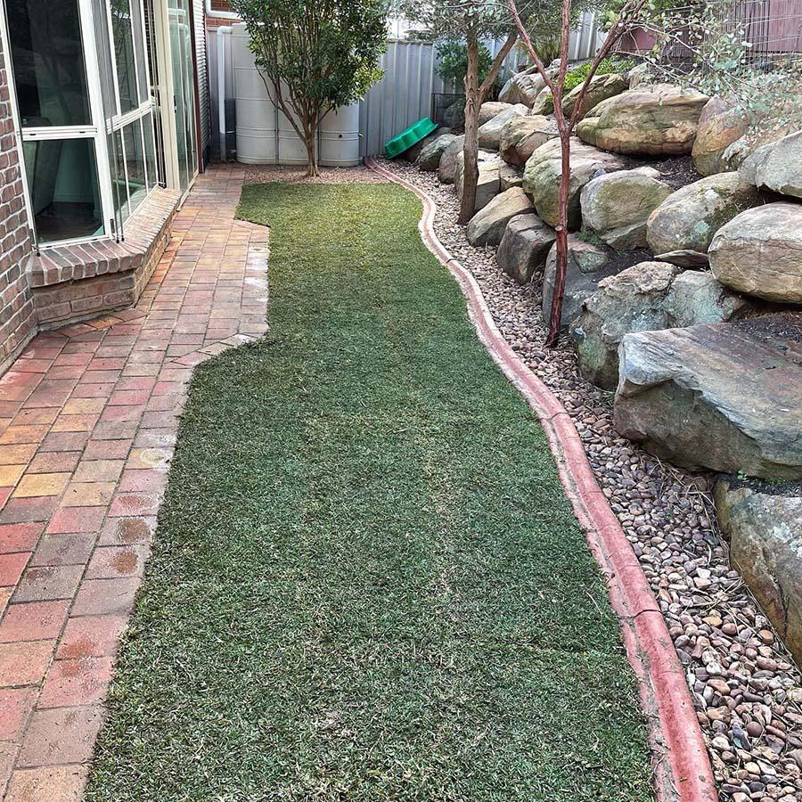 Seaford Rise – Backyard - During