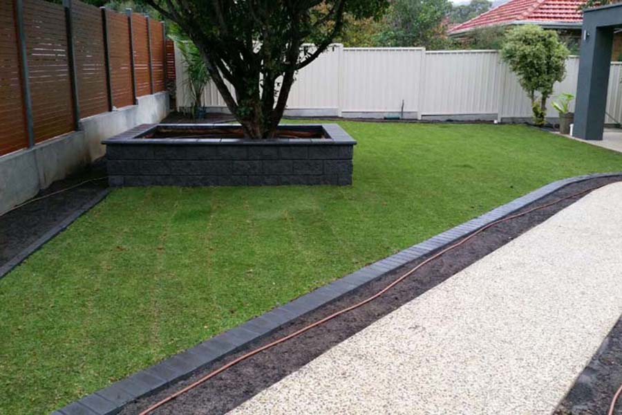 Kikuyu Grass Adelaide - home