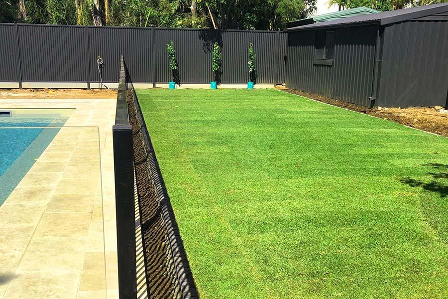 Turf Installer Adelaide