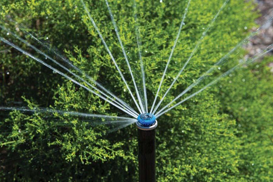 Irrigation Installer Adelaide - front yard