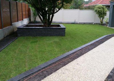 Lawn Supplier Adelaide