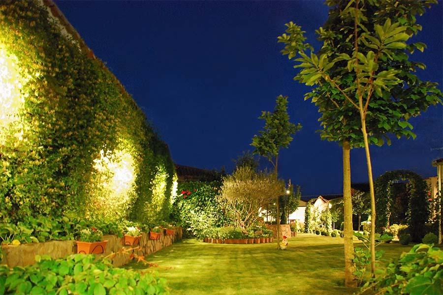 Garden Lighting - backyard