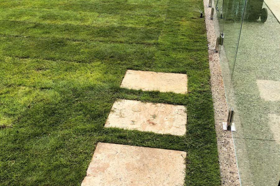 Sir Grange Lawn - backyard