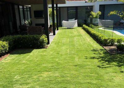 TIFTUF Lawn